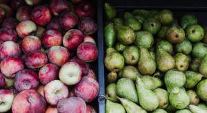 Argentyna: eksport jabłek i gruszek wzrósł o 25% w 2018 r.