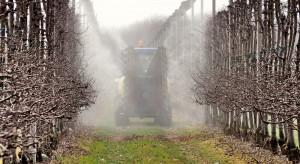 Parch jabłoni – początek wegetacji