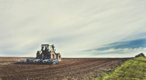GUS na temat użytkowania gruntów i powierzchni zasiewów w 2018 r.