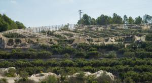 Włochy: Wichury i grad spowodowały zniszczenia sadów owocowych