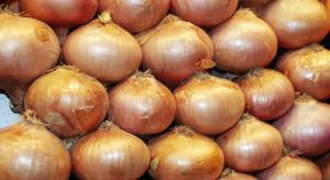 Kazachstan stał się drugim co do wielkości dostawcą cebuli do Polski