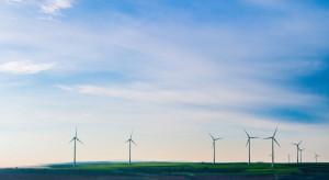 Kandydat Wiosny do PE: rolnicy z Polski są w stanie zaspokoić zapotrzebowanie na zieloną energię