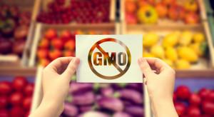 8 kwietnia obchodzony jest Międzynarodowy Dzień Opozycji Przeciw GMO
