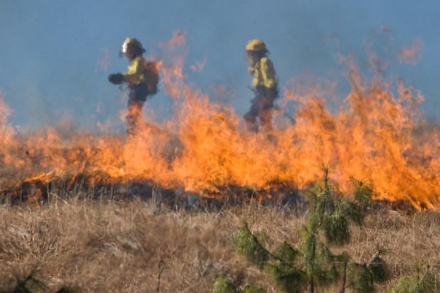 Policja apeluje o zaprzestanie bezsensownego wypalania traw