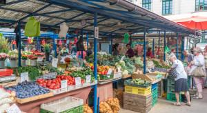 Bronisze: Wysoka podaż warzyw spod osłon wpływa na spadek cen
