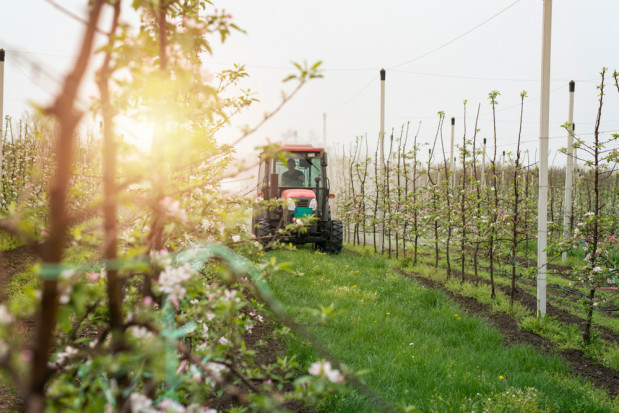 Rozwiązania od Innvigo na trudny sezon sadowniczy