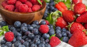 """""""Czas na polskie superowoce!"""" - ruszyła kampania promująca korzyści ze spożywania owoców jagodowych"""