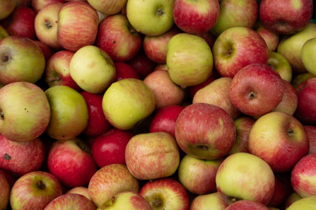 GUS: W 2017 r. Polska zanotowała dodatnie saldo w handlu jabłkami