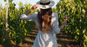 Podkarpackie: Coraz więcej turystów w winnicach