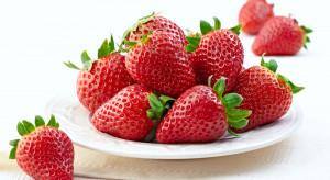 Większość Włochów uważa, że smak truskawek pogorszył się