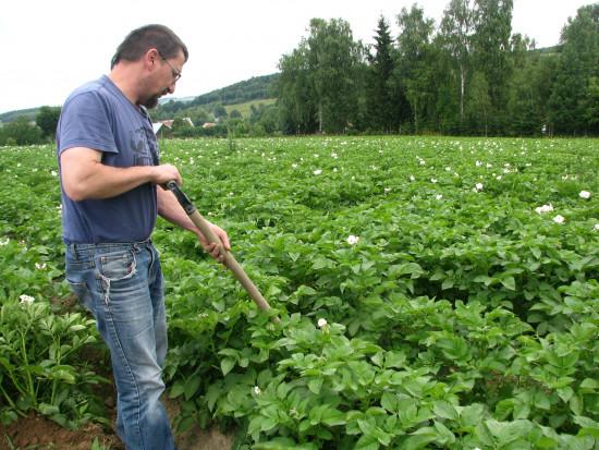 RWS - rolnictwo, które polega na obopólnej korzyści i zadowoleniu (wywiad)