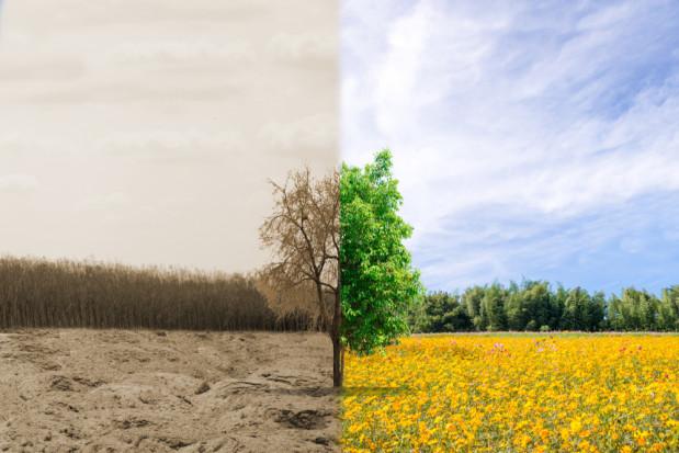 Raport: Unia Europejska zbyt szybko zużywa zasoby naturalne