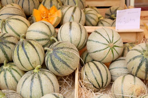 Francja: może wystąpić niedobór melonów. Powodem jest brak chętnych osób do zbiorów