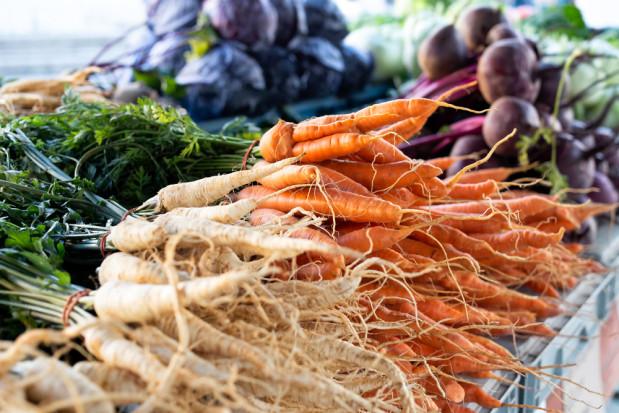Przez suszę ceny warzyw gruntowych mogą zdrożeć nawet o 20%