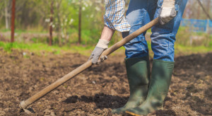 Kiedy pracę w gospodarstwie rolnym można wliczyć do stażu pracy?