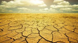Media: Korea Płn. zmaga się z największą suszą od dziesięcioleci