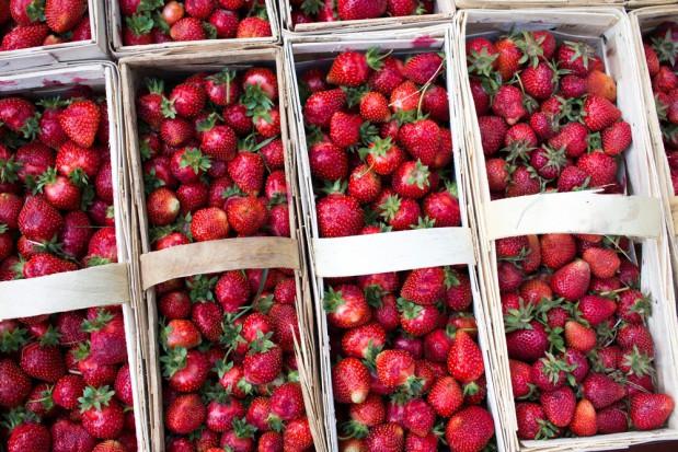 Wysokie ceny pierwszych truskawek. Przez resztę sezonu będą niewiele niższe?