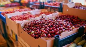 Wyjątkowo drogie czereśnie z importu. Ceny sięgają 55 zł za kilogram