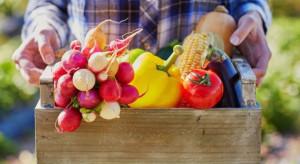 Carrefour chce promować polskie rolnictwo ekologiczne