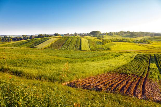 TSUE: Przepisy na Węgrzech ws. gruntów rolnych były złamaniem prawa UE