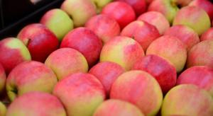 Rosjanie chwalą się akcją zatrzymania w lesie ciężarówek z polskimi jabłkami