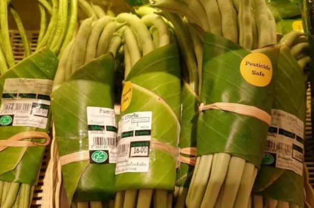 Liście bananowca zamiast plastiku?