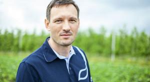 Truskawki narażone na porażenie chorobami grzybowymi! (wideo)