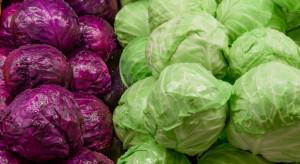 Ceny kapusty i cebuli poszły w górę