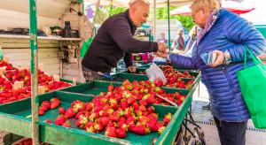 Warszawa: Uliczni sprzedawcy owoców i warzyw często łamią prawo