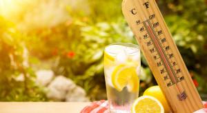 Na upał: jasne ubranie, nakrycie głowy, woda, soki, warzywa, owoce, zero alkoholu