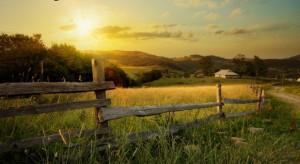 Do 2 lipca potrwają konsultacje ws. strategii na rzecz zrównoważonego rozwoju wsi