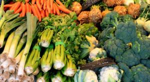 Prezes GPW: giełda żywnościowa ma poprawić sprzedaż produktów rolnych