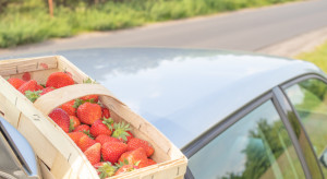 Opolskie: Kierowca kupując truskawki spowodował wypadek