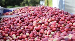 KSPOiW: Zmiany do ustawy o organizacji niektórych rynków rolnych niekorzystne dla rolników
