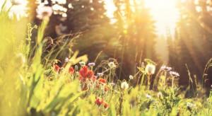 W piątek - 21 czerwca - rozpocznie się astronomiczne lato