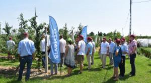 FDS Bayer: niskie plony owoców, silna presja mszycy jabłoniowo-babkowej i mączniaka (zdjęcia)
