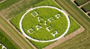 Bayer inwestuje w innowacje w zakresie nasion i śor, rolnictwa cyfrowego i rozwiązań biologicznych