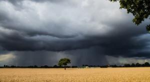 Upalną aurę zakończą burze i opady deszczu