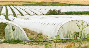 Resort środowiska: Folie porolnicze zostaną odebrane z gospodarstw