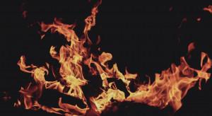 W całej Polsce niebezpieczna sytuacja pożarowa w lasach