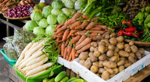 Ekspert: Na wysokich cenach warzyw nie zarabiają producenci