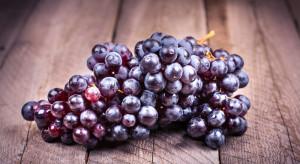 W Japonii kiść winogron sprzedano za 11 tys. USD
