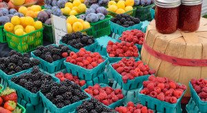 Bronisze: Duża podaż owoców jagodowych. Pojawiły się pierwsze śliwki