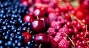 Ukraina: Zbiory owoców mogą spaść o 25% z powodu warunków pogodowych