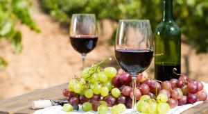 Zmiany klimatu wywołują poważne skutki w winiarstwie