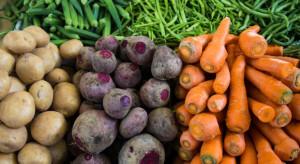 Credit Agricole: Drożejące warzywa podbiły dynamikę cen żywności