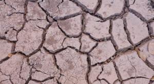 IUNG: Na terenie Polski w dalszym ciągu utrzymuje się susza rolnicza