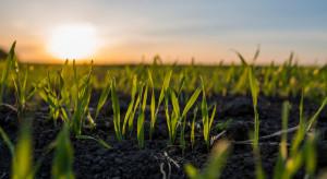 W Polsce więcej gospodarstw o powierzchni ponad 100 ha, niż przeciętnie w UE