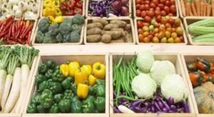 Bronisze: niewielkie spadki cen marchwi, cebuli, buraków. Pozostałe warzywa drogie