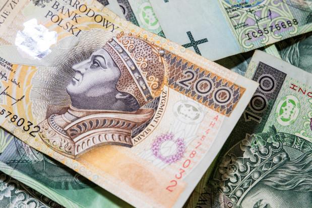 W Polsce trzy czwarte dopłat z UE trafia do 20 proc. największych gospodarstw (wideo)